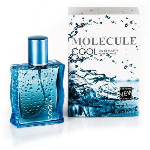 Парфюмерия 21 Века Molecule Cool